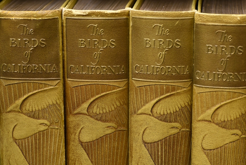 Birds of California book spines