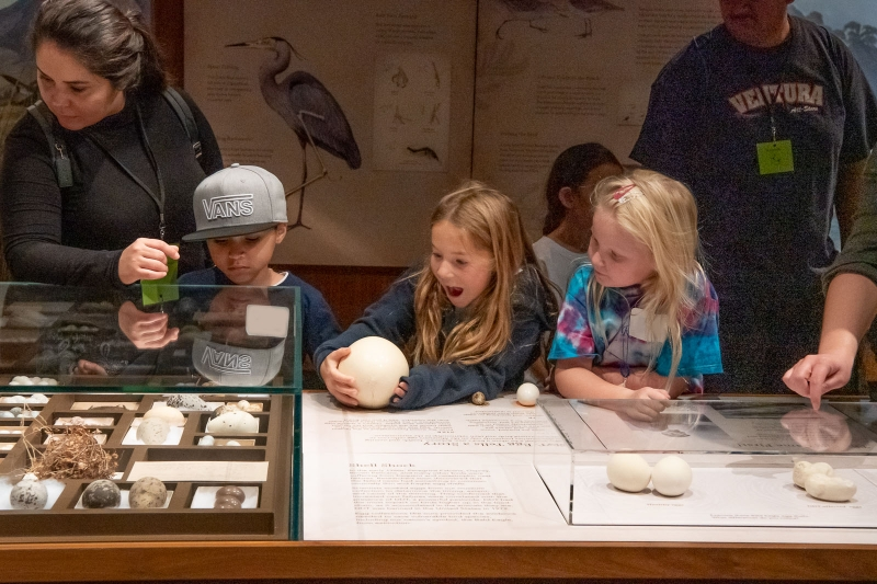 children visiting Bird Habitat Hall