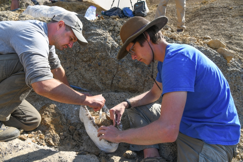 Dr. Jonathan Hoffman and Chris Everett at work on the skull jacket