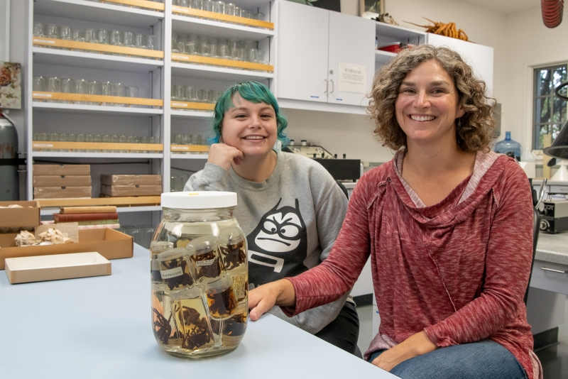 Otte and Dr. Maupin with a lovely jar of tarantulas (family Theraphosidae) in the Invertebrate Zoology lab