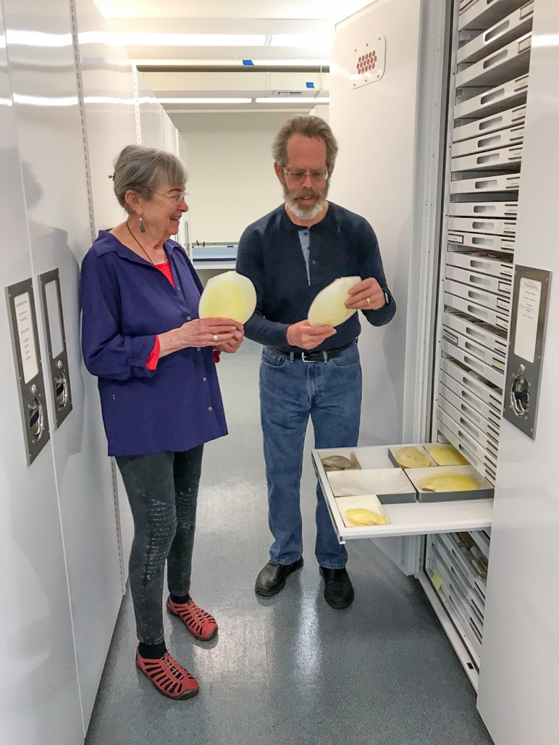 Carole S. Hickman and Paul Valentich-Scott in the Invertebrate Zoology collection