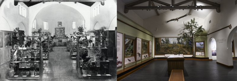 Santa Barbara Gallery c 1930 and 2018