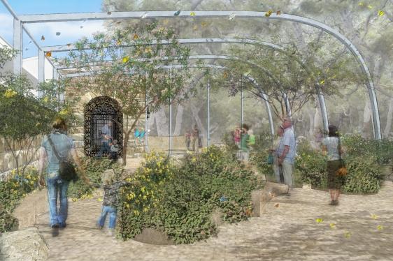 Santa Barbara Natural History Museum Camps