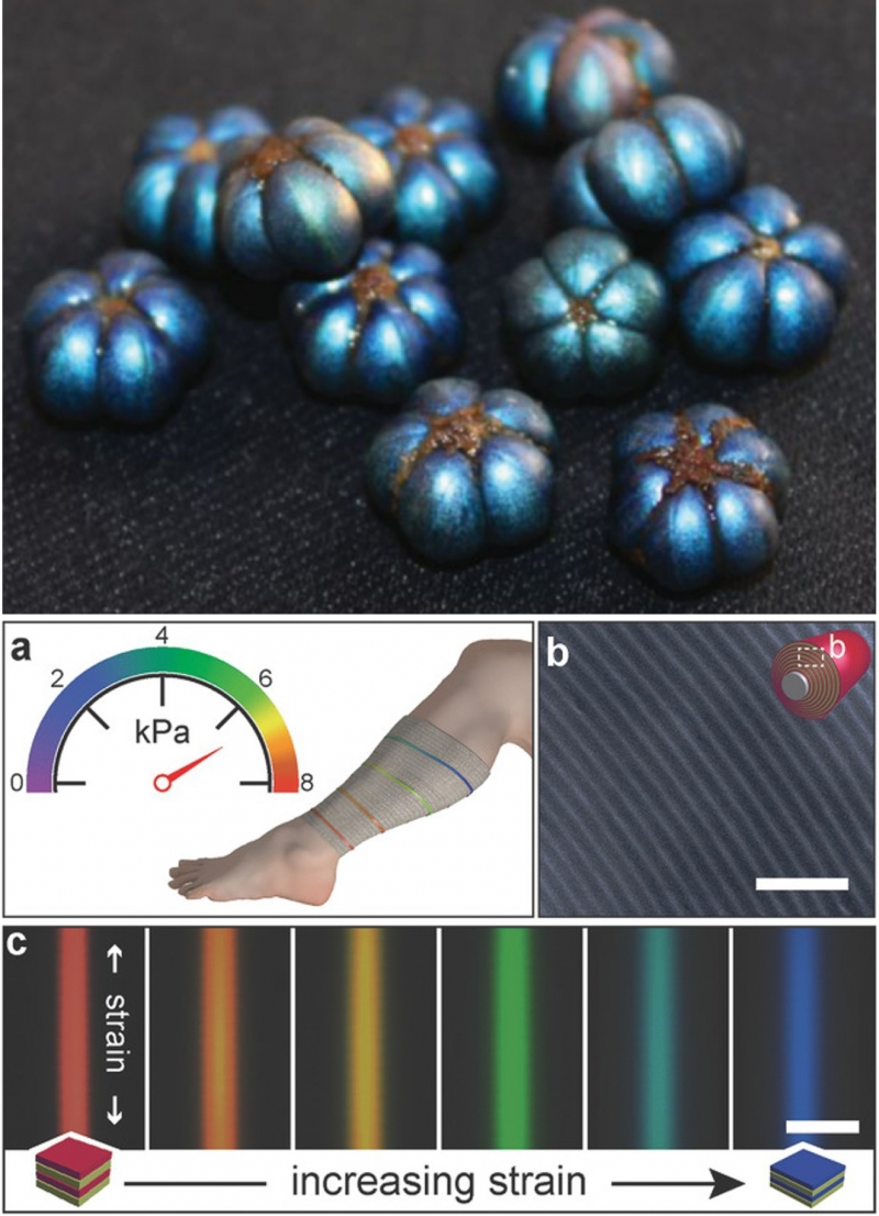 vivid blue fruit and color-changing bandage