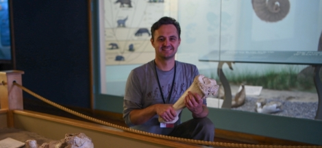 Dino Days: Local Fossils with Paleontologist Dr. Jonathan Hoffman